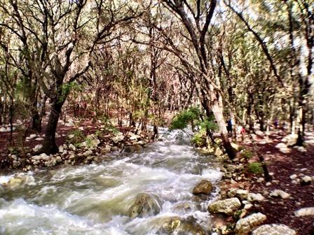 Excursión a Ses Fonts Ufanes en Mallorca