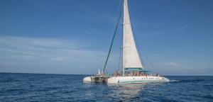 5  excursiones mejores que el Magic catamaran en Mallorca