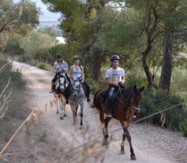 rutas a caballo mallorca