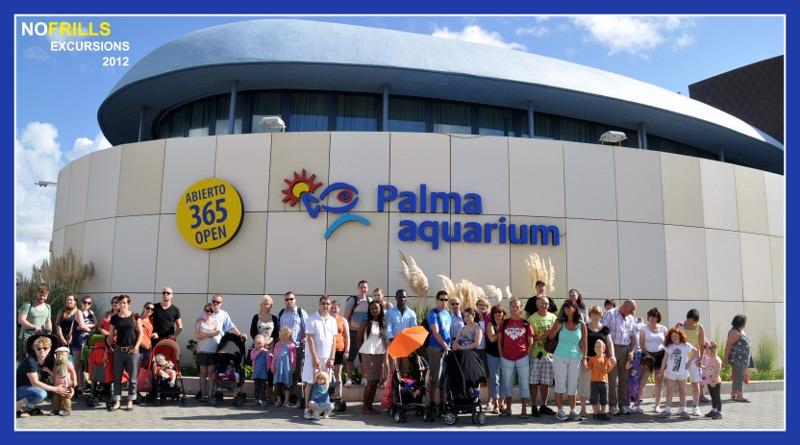 visita a Palma aquarium