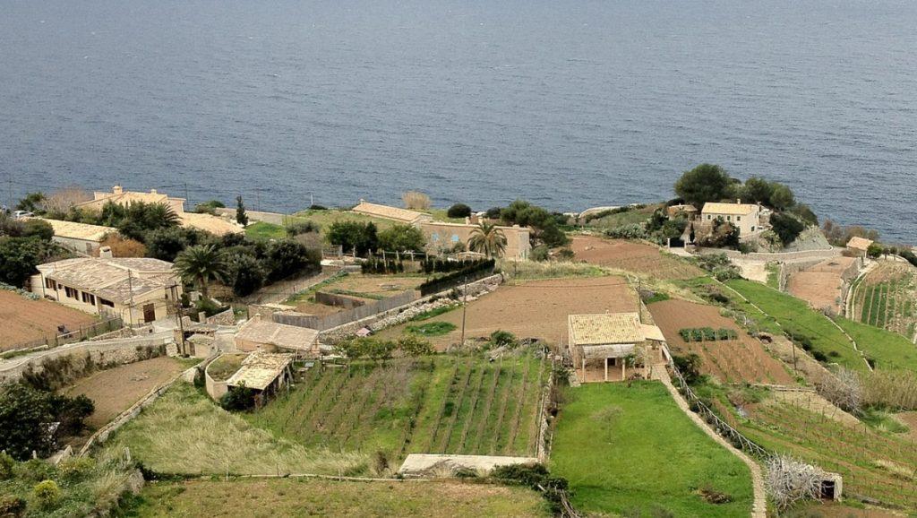 Excursion corta a Banyalbufar
