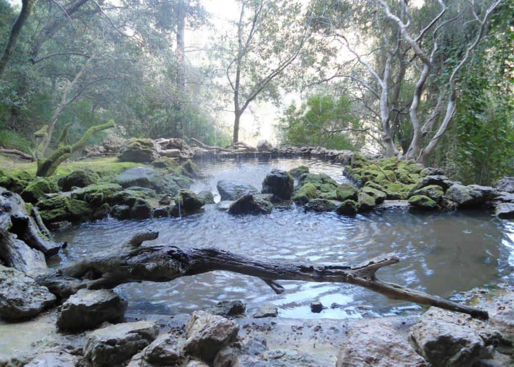 Reserva puig Galatzo